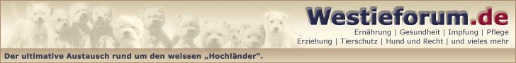 Westieforum.de - Das große Hundeforum rund um den Westie und andere Terrier